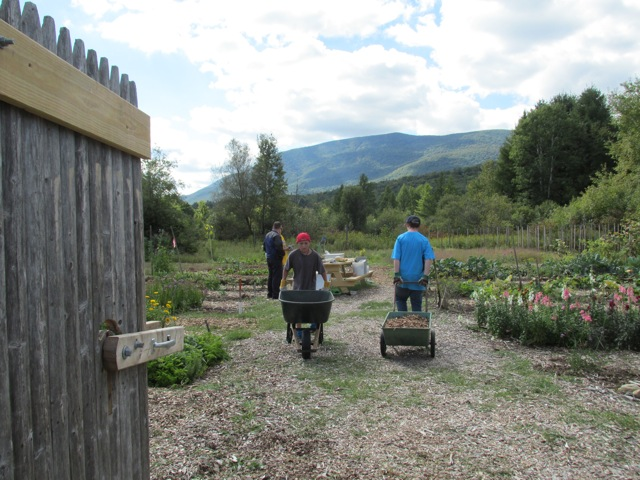 MEMS students help put the Manchester Community and Education Garden to bed