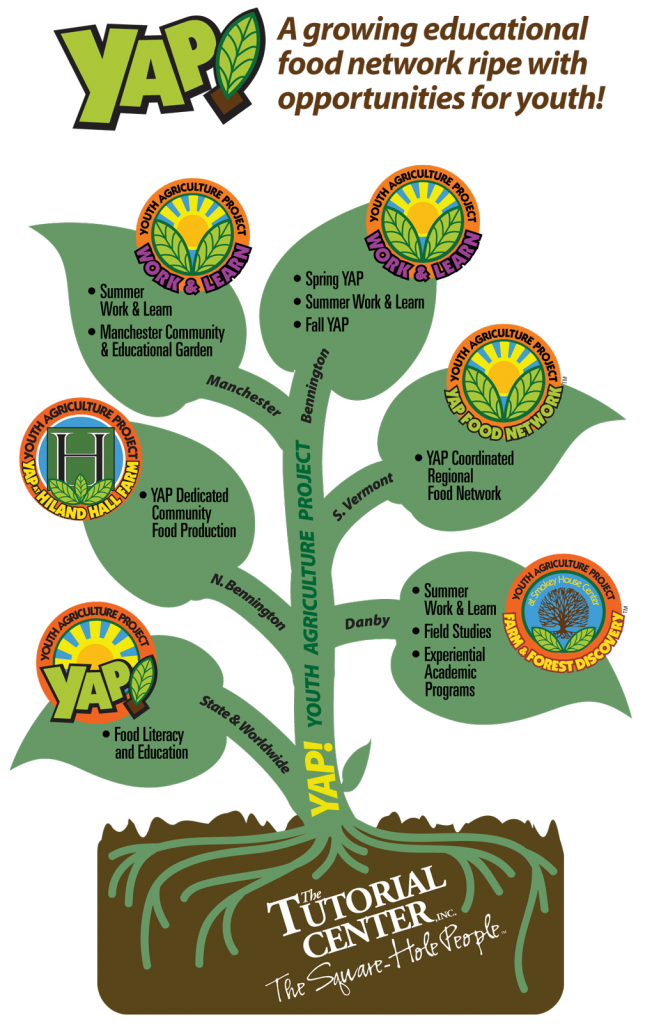 The Tutorial Center's YAP Youth Agriculture Program Org Chart